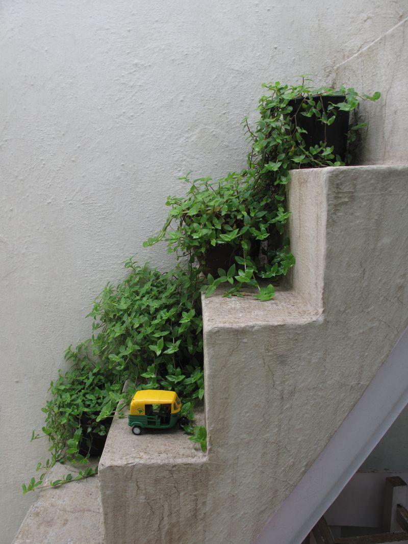 Green_Steps