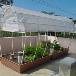 Rooftop organics