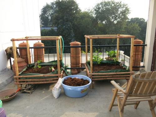 Roof_garden1