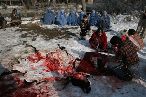 Eid_slaughter_2